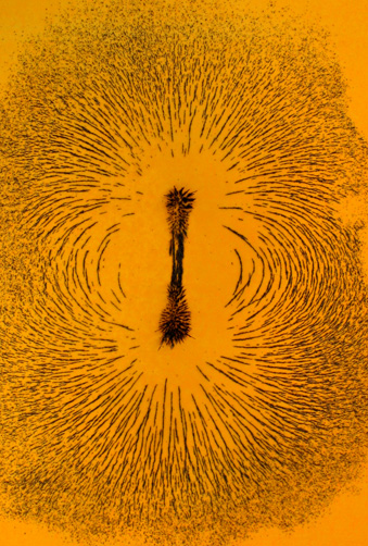 Magnetic field shown by iron filings